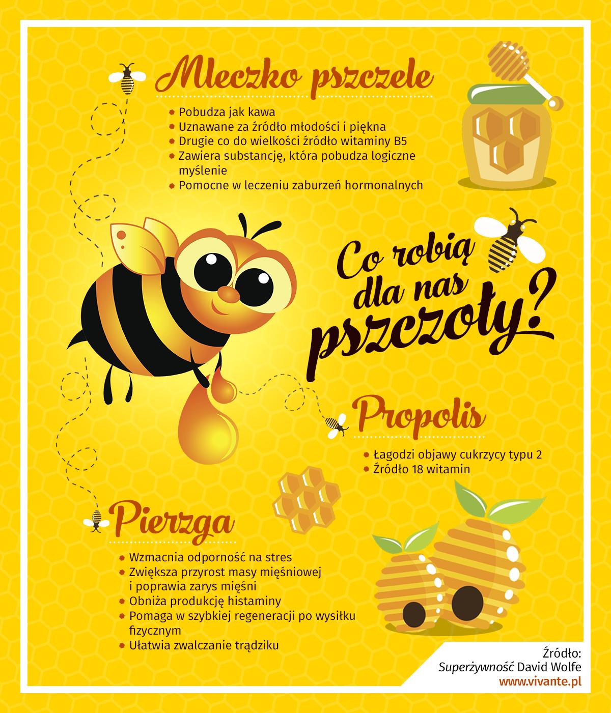Co robią dla nas pszczoły?