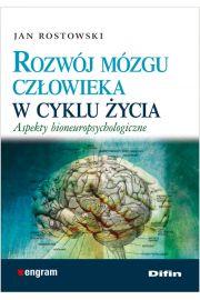 Rozwój mózgu człowieka w cyklu życia
