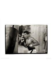 Muhammad Ali Punchbag - art print