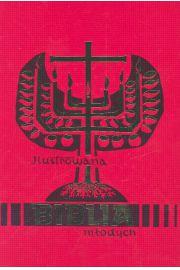 Ilustrowana Biblia m�odych
