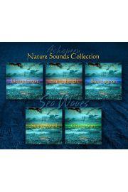 """Zestaw 5 utworów z serii """"Nature Sounds Collection: Sea Waves"""""""