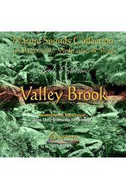 (e) Birds & Streams vol. 3: Valley Brook - Piotr Janeczek