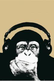 Steez Małpa w Słuchawkach - plakat