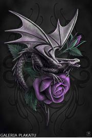 Anne Stokes - Purpurowa Róża i Smok - plakat