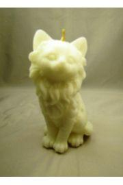 Biały Kot - Świeca