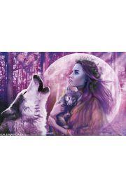 Pełnia Księżyca Wilki i Dziewczyna - plakat