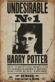 Harry Potter Poszukiwany - plakat