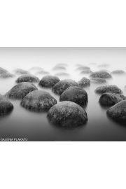 Moeraki - Kamienie we mgle - reprodukcja