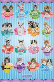 Kotki i Ciasteczka - plakat