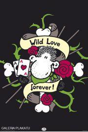 Sheepworld Dzika Miłość - plakat