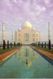 Indie Taj Mahal - plakat