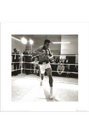 Muhammad Ali Spar - art print