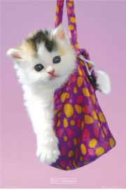 Kotek w Torebce Keith Kimberlin - plakat
