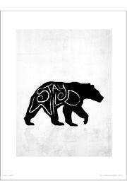 Stay Wild Niedźwiedź - art print