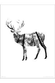 Deer Woods - art print