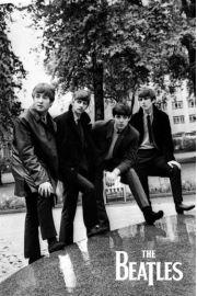 The Beatles - zdjęcie w Parku - plakat