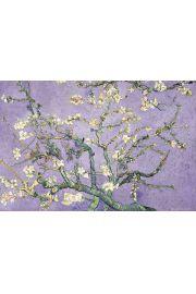 Vincent Van Gogh - Kwitnący Migdałowiec - plakat