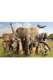 Dzikie Zwierzęta Afryki i Azji - plakat
