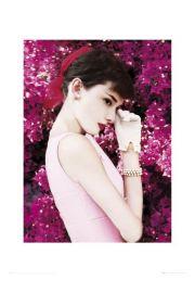 Audrey Hepburn Kwiaty - reprodukcja
