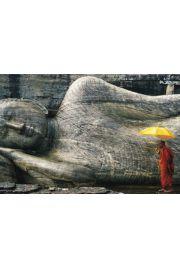 Kamienny Budda - Mnich z Parasolem - plakat