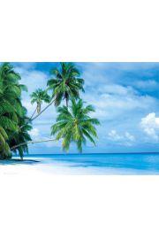 Malediwy - Wyspa Fihalhohi - plakat