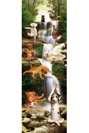 Joga - Zabawne Figury przy Wodospadzie - Psy - plakat