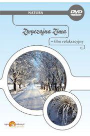Zwyczajna zima - film relaksacyjny DVD