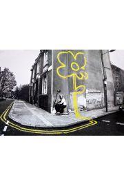 Banksy Żółty Kwiat - plakat
