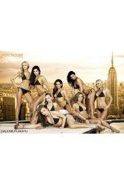 Penthouse Dziewczyny na Dachu - Akt - plakat