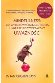 Mindfulness Jak wytrenować dzikiego słonia i inne przygody w praktyce uważności