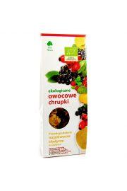 Chrupki Owocowe Bio 100 G - Dary Natury