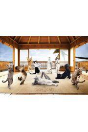 Joga - Zabawne Figury w Chacie - Koty - plakat