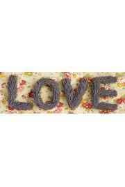 Howard Shooter Miłość - Love - plakat