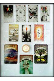 Różne aspekty życia - odczyt z kart