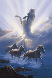 Dzikie Konie - Wild Spirit - plakat