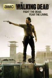 The Walking Dead Fight the Dead, Fear the Living - plakat