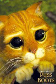 Kot w Butach - Shrek - plakat