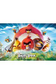 Angry Birds Key Art - plakat