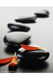 Zen Stones i Spa - red - plakat
