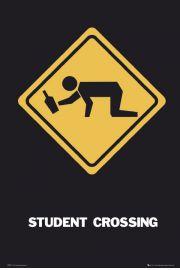 Piwo Przejście dla Studenta - plakat