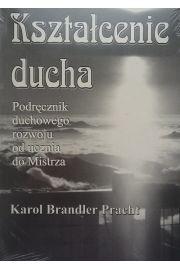 Kształcenie ducha - Karol Brandler Pracht