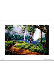 Bluebell Woods - art print