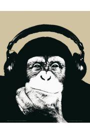 Steez Monkee - Małpa w Słuchawkach - plakat