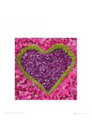 Serce - Madalene's Hearts - reprodukcja