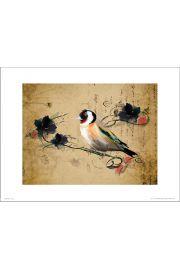 Birds Vintage - art print