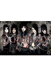 Black Veil Brides Skóra - plakat
