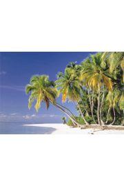 Malediwy - rajska plaża - plakat