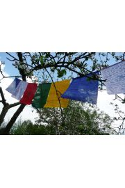 Tybetańskie flagi modlitewne - 16x21cm/170cm
