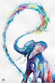 Słoń Marc Allante - plakat