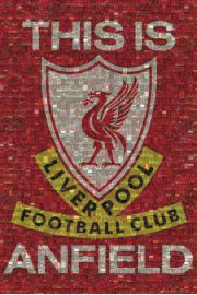 FC Liverpool Mozaika - plakat